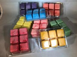 3 RAIN FOREST Triple Scented NOOPY'S Soy Wax Tarts Melts Cle