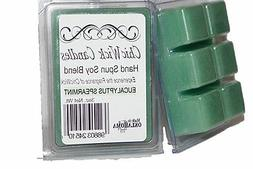 ChicWick 2Pack Eucalyptus Spearmint Wax Melts 6oz Wax Cubes