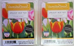 SCENTSATIONALS Scented WAX CUBES Melts Beauty TIP TOE TULIPS