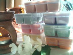 Best Candy Cane Wax Melts, Soy, Fresh Mints, Strawberry, Van