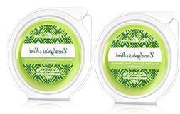 Bath and Body Works 2 Pack Eucalyptus Mint Melt. 0.97 Oz / 2