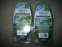 YANKEE CANDLE FROSTED HOLLY 6 CT WAX MELTS