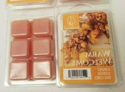 ScentSationals Highly Scented Wax Cubes/Melts Warm Welcome S