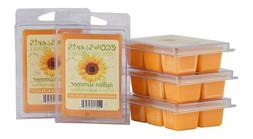 EcoScents Indian Summer Wax Melts , Orange