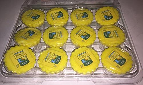 12 sicilian lemon tarts wax