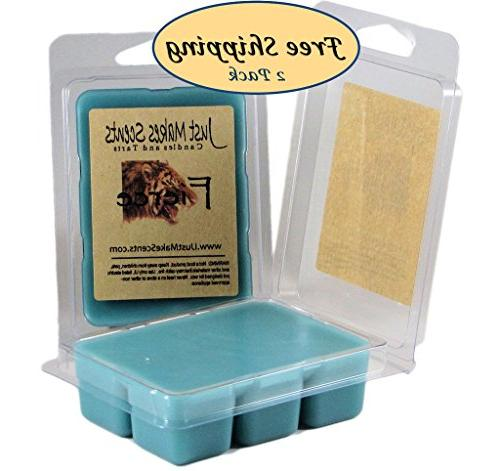 2 Pack - Fierce Scented Wax Melts - Compare to Abercrombie &