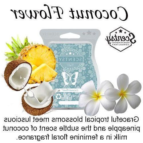 2 bars coconut flower wax melt beach