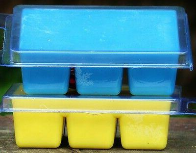 6pk 100hr CHRISTMAS by the BEACH Soy WAX CLAM MELTS for Oil