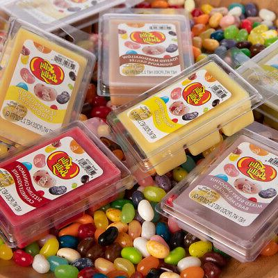 8pk Belly Jelly Candy Scented Soy Wax Melts Air Freshener