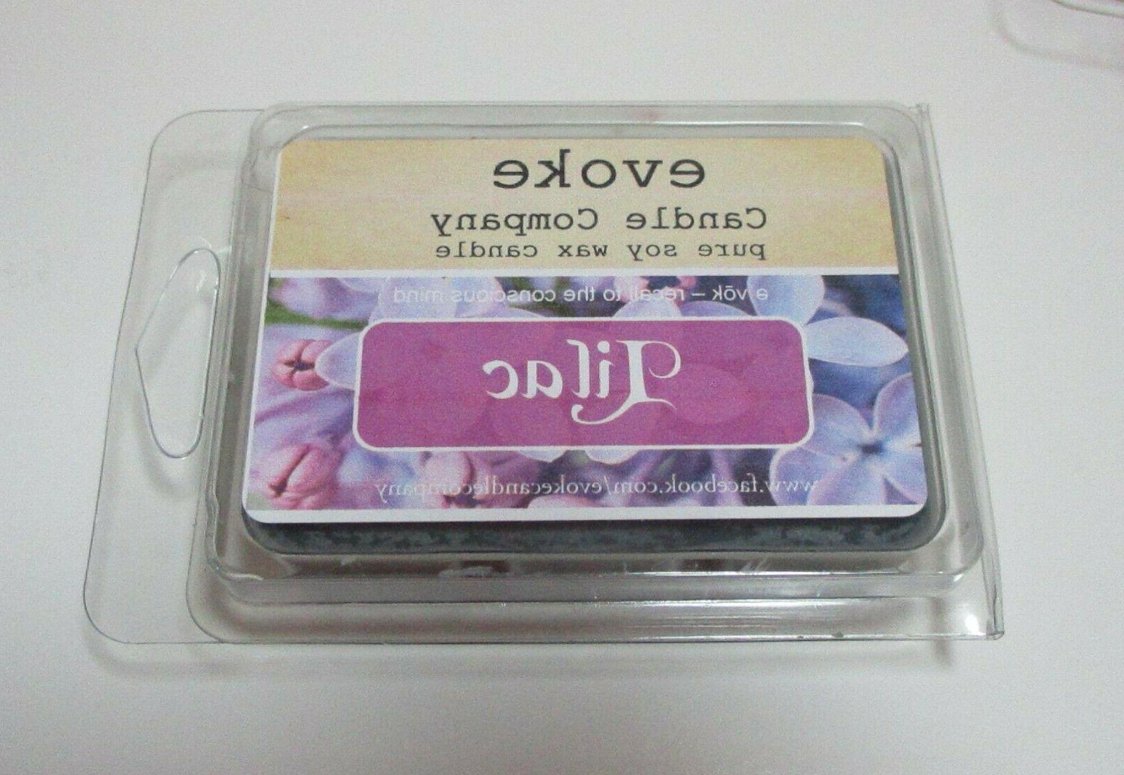 Highly Pure Wax Melts 6 clamshell Fruit & Scents
