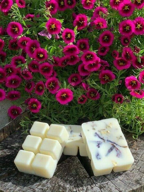 Soy Melts Natural Botanicals Watermint And Clementine