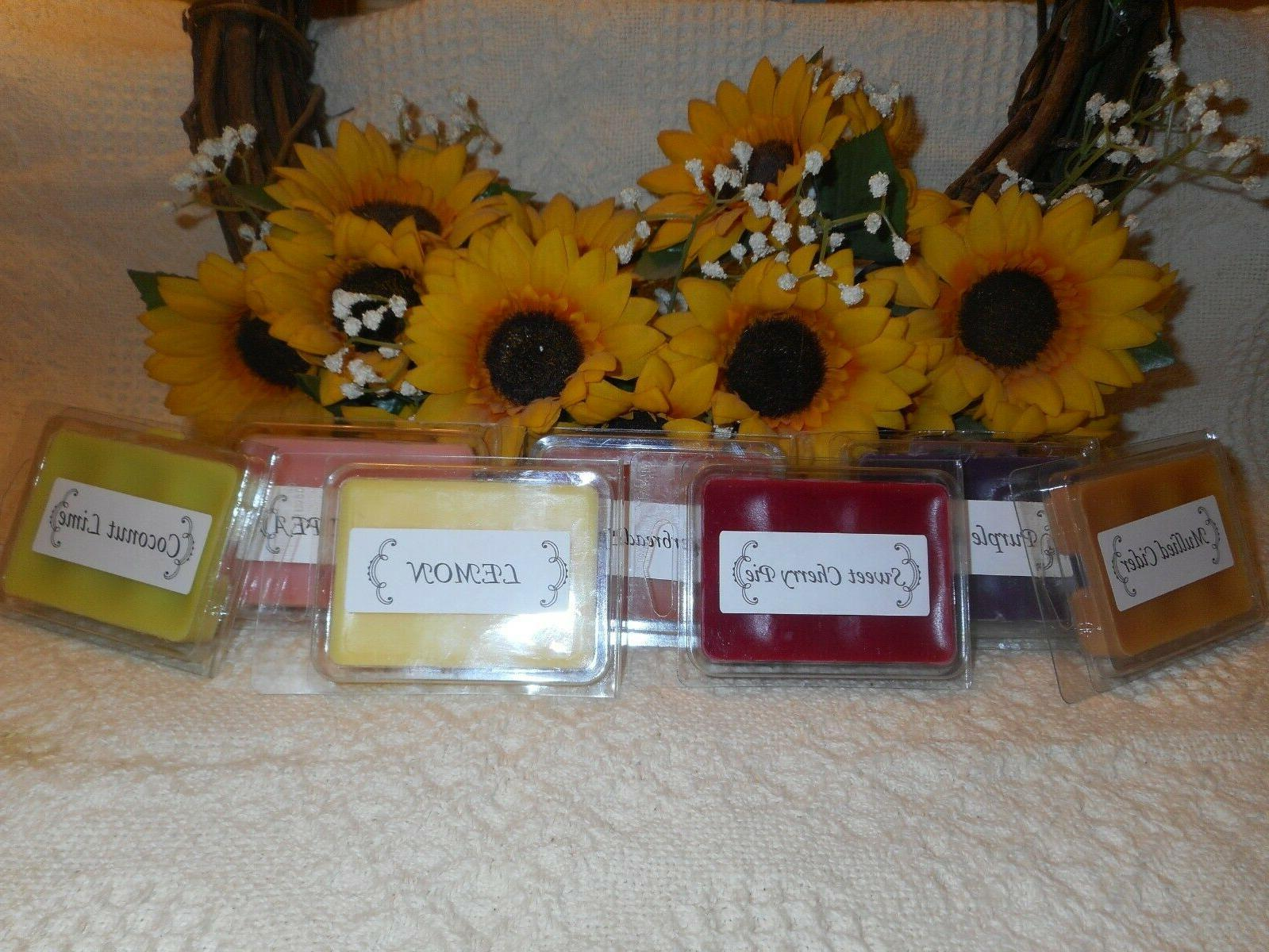 BHG & Carolina WAX MELTS Scented BUY 4 OR MORE GET 1 FREE Fa
