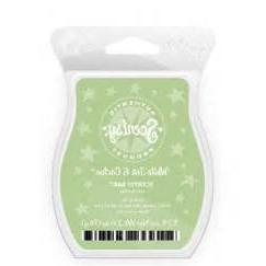 1 X White Tea and Cactus Scentsy Bar Wickless Candle Tart Wa