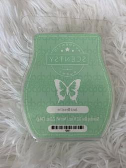 🔴 New Scentsy JUST BREATHE Bar 3.2 fl oz Aromatic Wax Mel