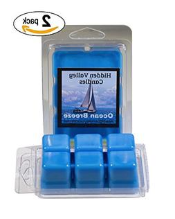 Ocean Breeze 2 Pack- Double Scented Wax Melts. The scent of