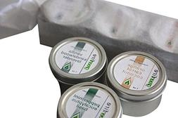 Greenfire 3pk All Natural Massage Oil Candles, Lavender Sand