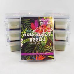 2 Pack Polynesian Resort Lobby Bamboo Citrus Tropical Soy Wa
