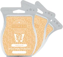 Scentsy, Skinny Dippin', Wickless Candle Tart Warmer Wax 3.2